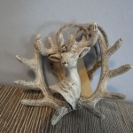 Gewei hert, landelijke decoratie